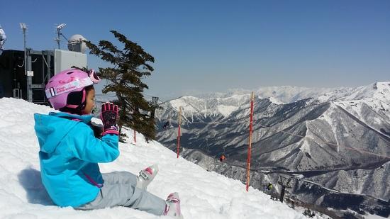キッズスノーフェスティバル|苗場スキー場のクチコミ画像