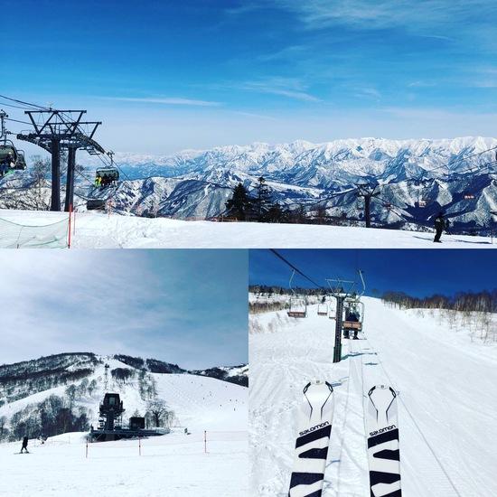 快適な春スキー|かぐらスキー場のクチコミ画像