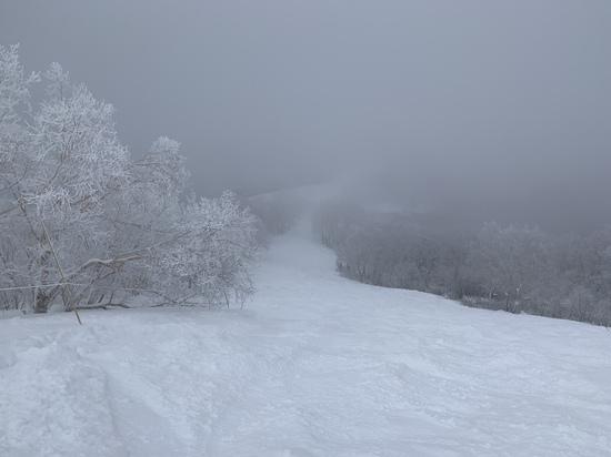 最高のパウダー|竜王スキーパークのクチコミ画像