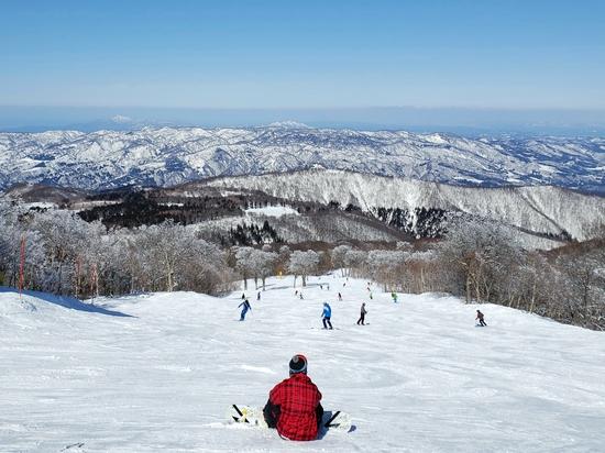 多彩なコース|野沢温泉スキー場のクチコミ画像1