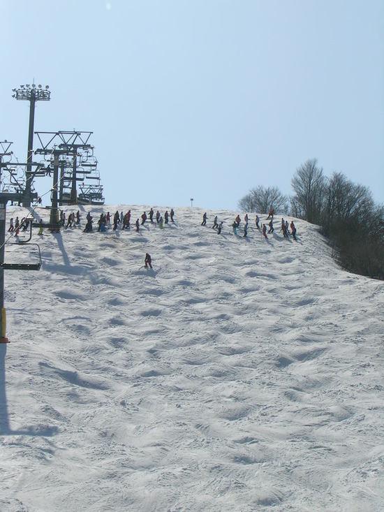 コースがいっぱいあって飽きません。|石打丸山スキー場のクチコミ画像