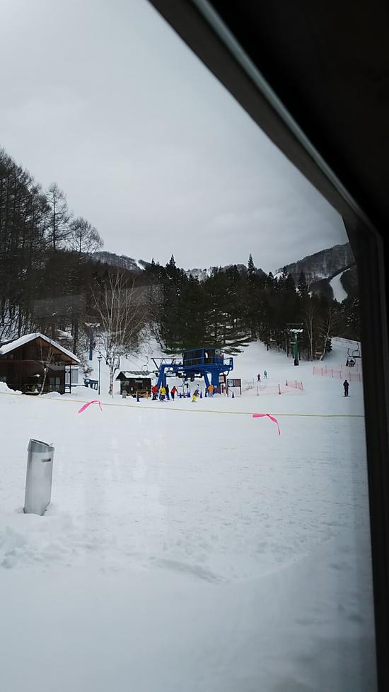 関東唯一のスキーヤーオンリー|かたしな高原スキー場のクチコミ画像