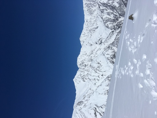 絶景!|白馬八方尾根スキー場のクチコミ画像