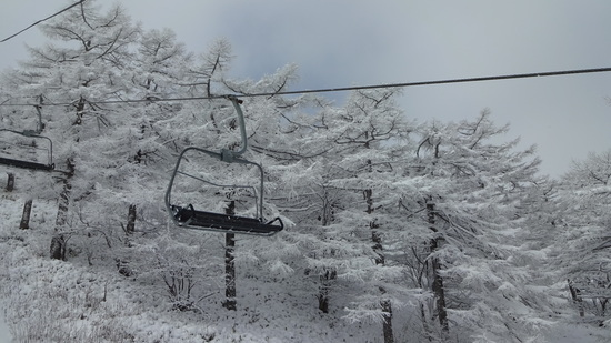初滑り|川場スキー場のクチコミ画像