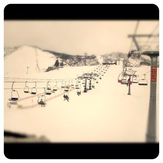 毎年一回は行きます。 上越国際スキー場のクチコミ画像