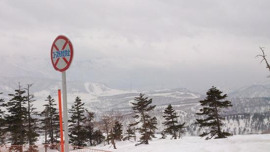 苗場→田代→かぐら|かぐらスキー場のクチコミ画像