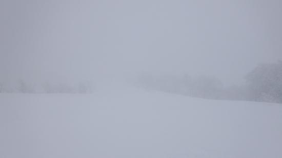 最高の新雪 野沢温泉スキー場のクチコミ画像
