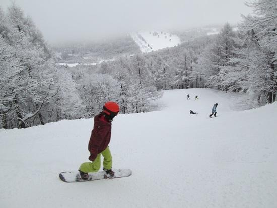 上々の雪でした|斑尾高原スキー場のクチコミ画像