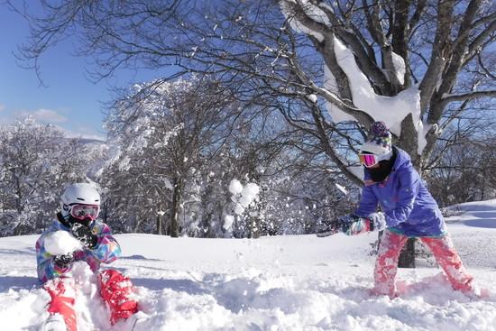 ここだけの特別|北信州 木島平スキー場のクチコミ画像