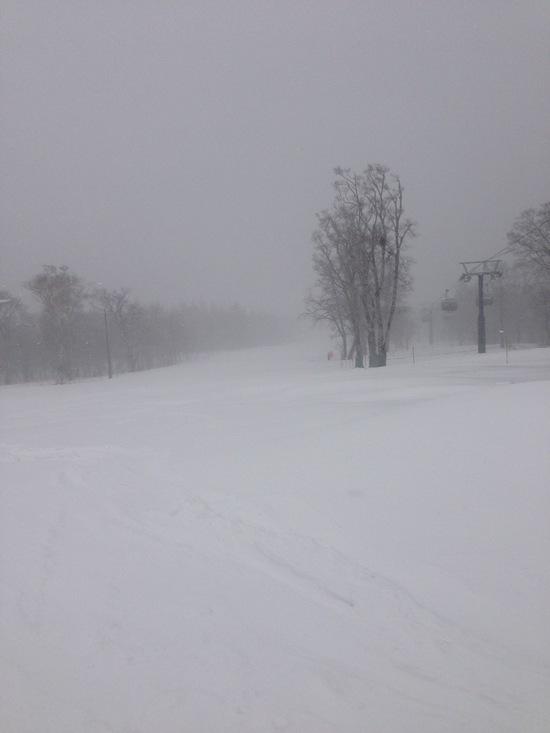 新雪 ふかふか|グランデコスノーリゾートのクチコミ画像