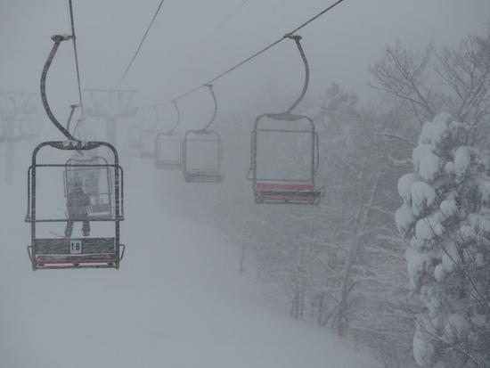 大雪の関西スキースノボの日。|ハチ・ハチ北スキー場のクチコミ画像