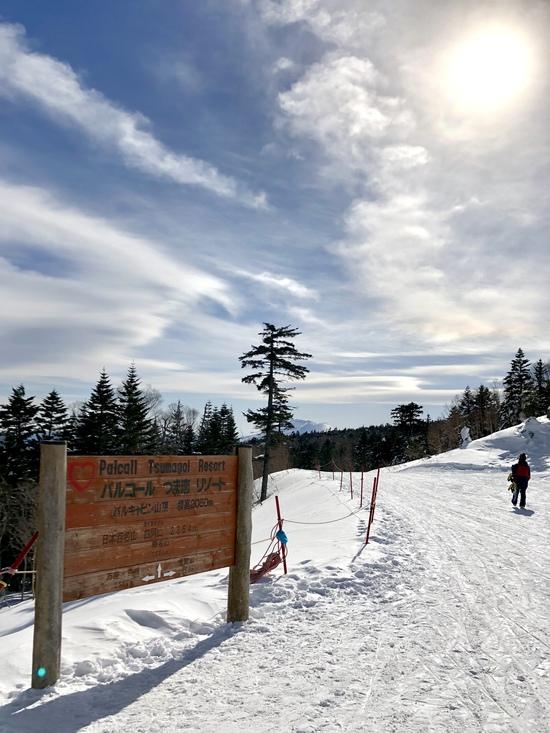 快晴&雪質良く快適クルージング|パルコールつま恋スキーリゾートのクチコミ画像
