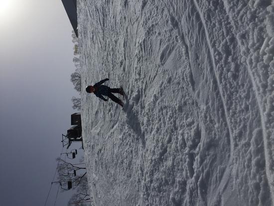 春スキー|ルスツリゾートのクチコミ画像3