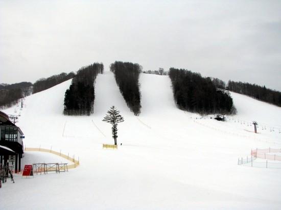 中、上級者用のコースが多い|戸隠スキー場のクチコミ画像