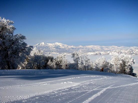 やまびこゲレンデはパウダースノーと樹氷の世界でした 野沢温泉スキー場のクチコミ画像