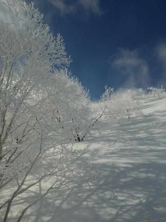 天気よかったです。|車山高原SKYPARKスキー場のクチコミ画像1