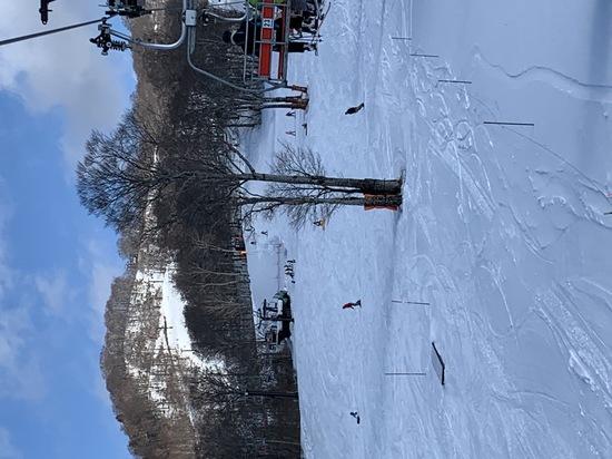 リフト券ありがとう!|たんばらスキーパークのクチコミ画像