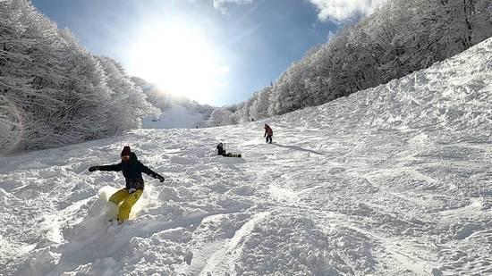 北信州 木島平スキー場のフォトギャラリー3