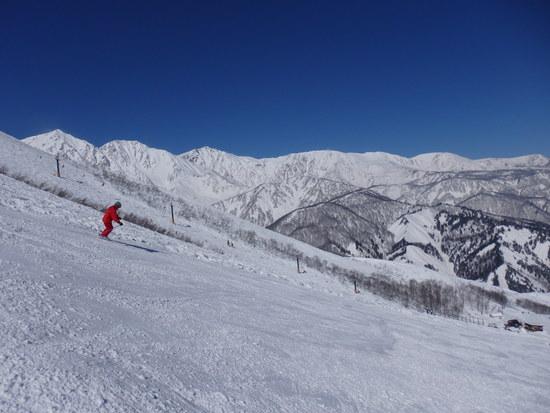 白馬三山がきれいでした|白馬八方尾根スキー場のクチコミ画像