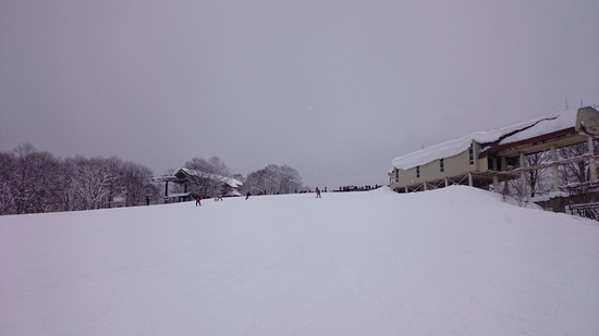 やっぱり日曜日は混んでますね|白馬岩岳スノーフィールドのクチコミ画像