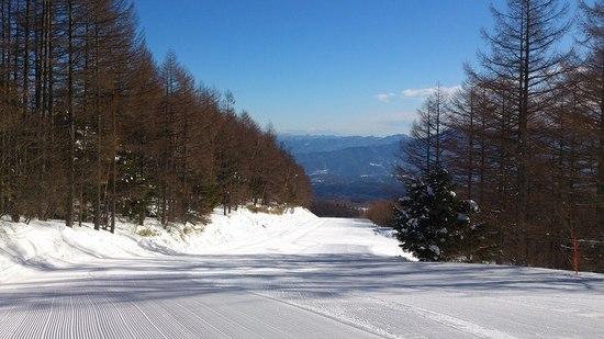雪質最高!|八千穂高原スキー場のクチコミ画像