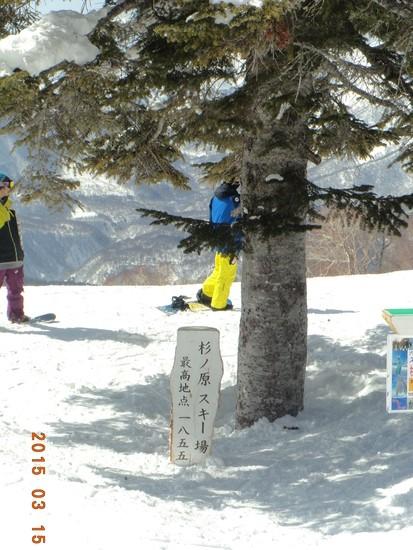 快適・広大なスキー場|妙高杉ノ原スキー場のクチコミ画像