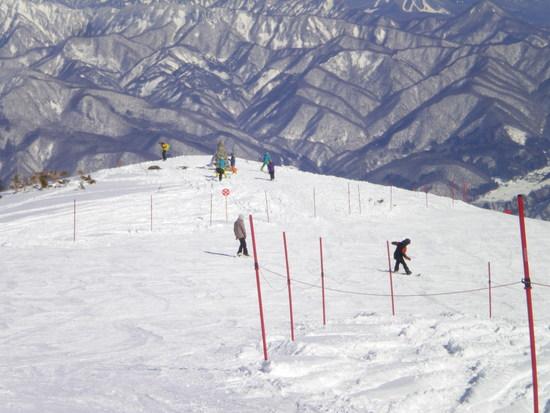 まだパウダーが楽しめます|白馬八方尾根スキー場のクチコミ画像