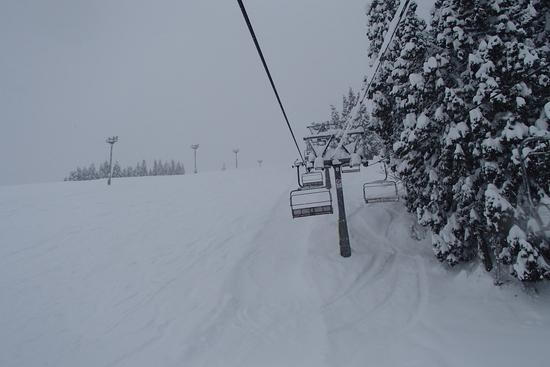 広すぎて迷います|石打丸山スキー場のクチコミ画像