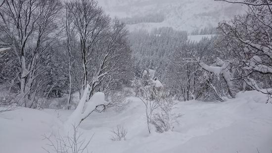 やっぱり八海山|六日町八海山スキー場のクチコミ画像2