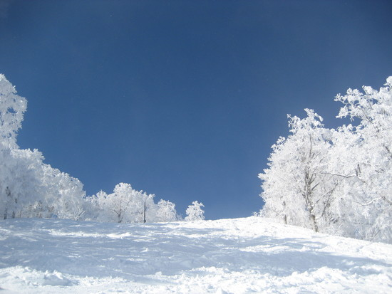 他が苦戦してるけど安比はOK!|安比高原スキー場のクチコミ画像2