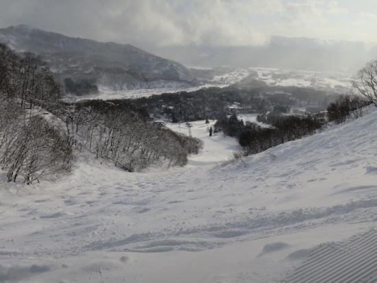 2015/02/01(日) 長野県 白馬八方尾根の速報|白馬八方尾根スキー場のクチコミ画像