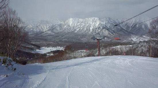 いや~寒かったです|戸隠スキー場のクチコミ画像