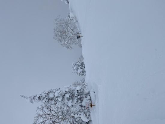 大雪山旭岳ロープウェイのフォトギャラリー3