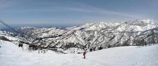 やっぱりパウダーが好き!|シャルマン火打スキー場のクチコミ画像