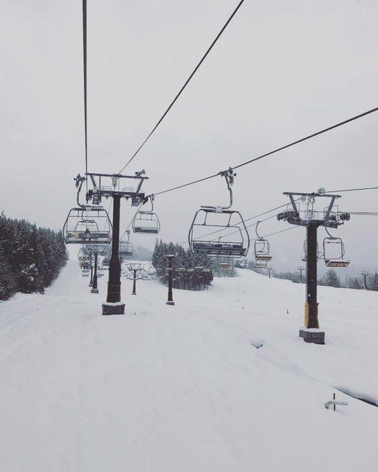 初めてのジャム勝|スキージャム勝山のクチコミ画像