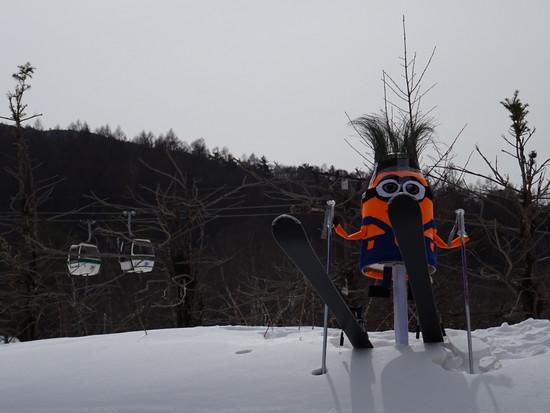 蓼科山がきれいです|白樺高原国際スキー場のクチコミ画像