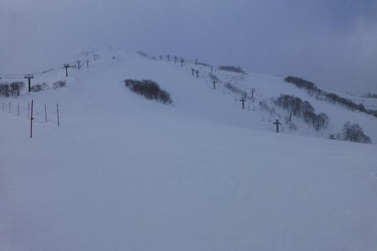 パウダー最高|白馬八方尾根スキー場のクチコミ画像