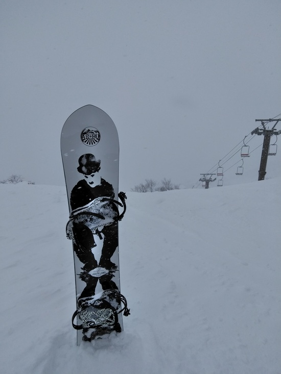 パウダー天国|谷川岳天神平スキー場のクチコミ画像