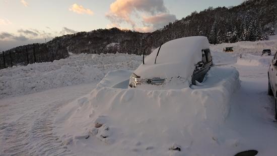 大雪警報がパウダー三昧|タングラムスキーサーカスのクチコミ画像