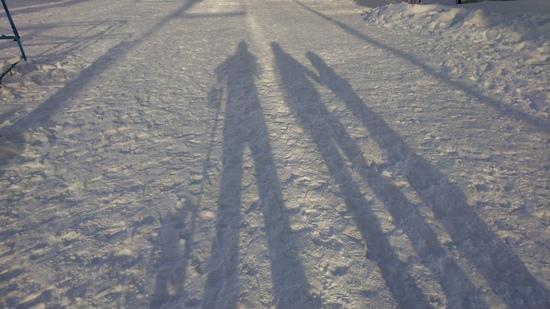 大雪警報がパウダー三昧|タングラムスキーサーカスのクチコミ画像2