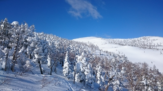 満喫|かぐらスキー場のクチコミ画像