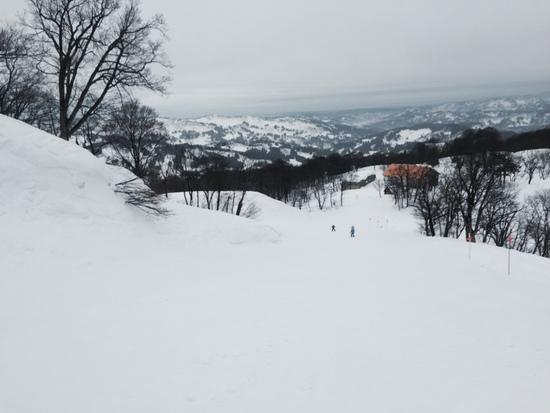 雪雪質最高|キューピットバレイのクチコミ画像1