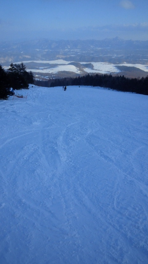 パノラマコースは自由自在|パルコールつま恋スキーリゾートのクチコミ画像