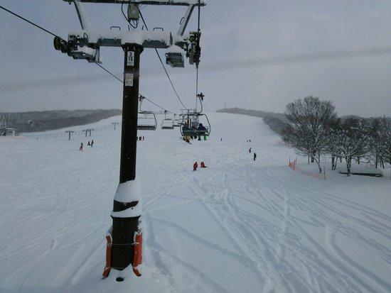 今年から始める人や初級者人には勧め|ひるがの高原スキー場のクチコミ画像