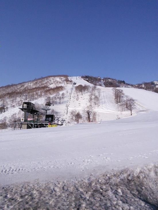 雪多し、でも暑い|かぐらスキー場のクチコミ画像
