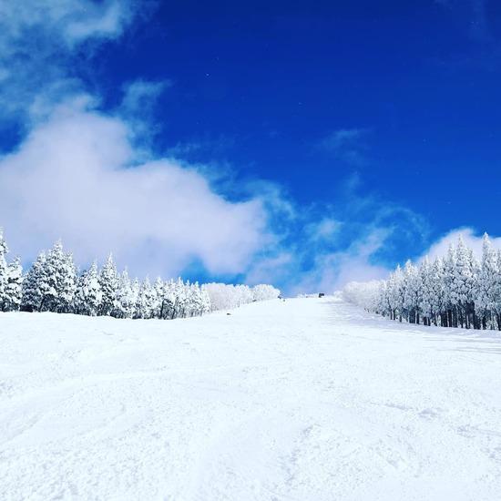 雪のち晴れ、パウダーのち非圧雪|スキージャム勝山のクチコミ画像