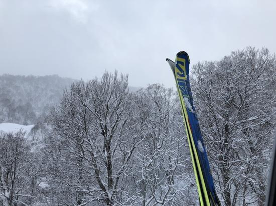 レベルに合わせてゲレンデすみ分け|かぐらスキー場のクチコミ画像