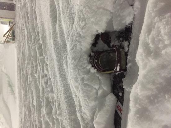 ようやく降雪! スプリングバレー泉高原スキー場のクチコミ画像2