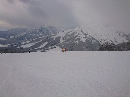 白馬岩岳スノーフィールドのフォトギャラリー4