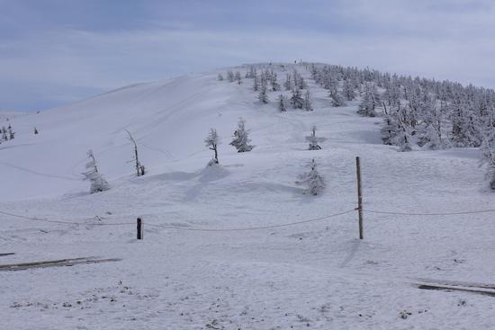 モンスターの季節は終わっていたものの|蔵王温泉スキー場のクチコミ画像